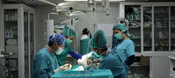 curso auxiliar veterinario – una operación