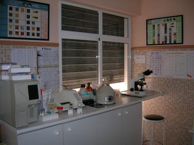 curso auxiliar veterinario – laboratorio clínica
