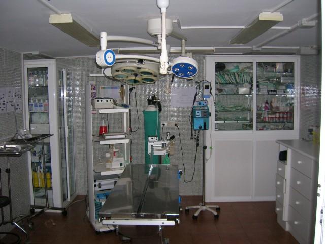 curso auxiliar veterinario – quirófano clínica